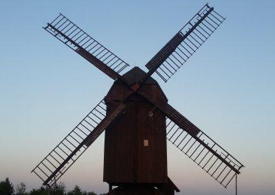 Windmühle in Danstedt
