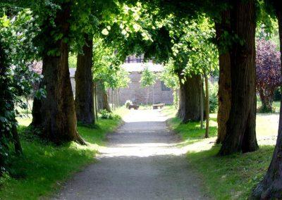 Schloß Hessen - Park